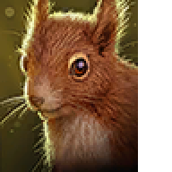 RobotSquirrel