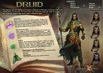 druid book