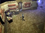 Neverwinter Nights: Witch's Wake